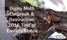 2016 Gypsy Moth Tour Screen Shot